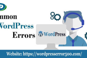 Common wordpress Error