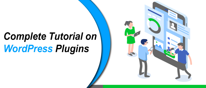 Complete Tutorial on WordPress Plugins